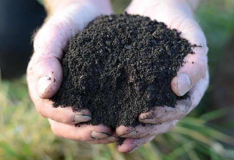 High Quality Planting Topsoil