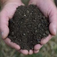 Turfing Soil